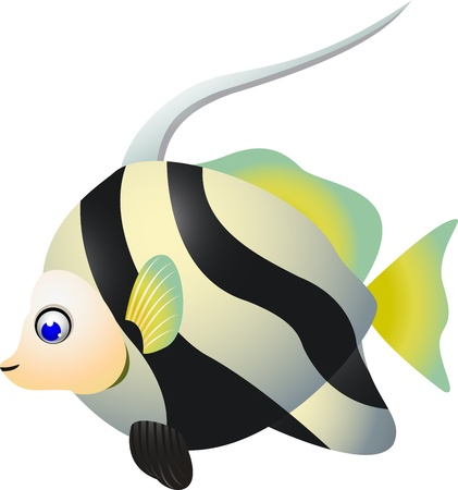 zanclus cornutus: Tropical cartoon fish