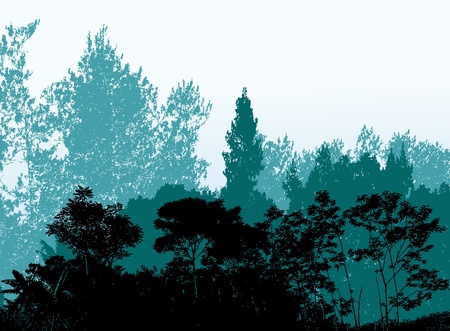forest background silhouette Vector