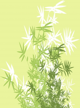 bamboo branches background Stock Vector - 14288234