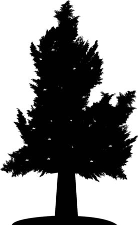 tree silhouette Stock Vector - 14288232