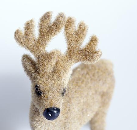 Rudolph the Reindeer photo