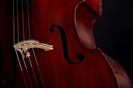 Contrabass in front of black background