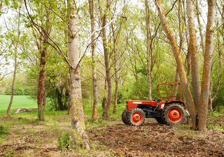 tractor stopped between the trees Stock Photo