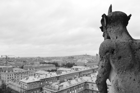 panorama of Paris in black and white