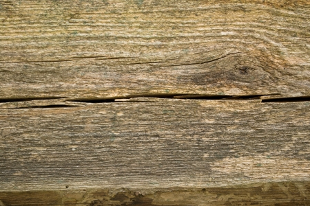 Rough wooden background and texture photo