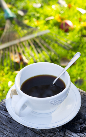 Hot coffee in a cup in autumn garden with two pieces of sugar beside photo
