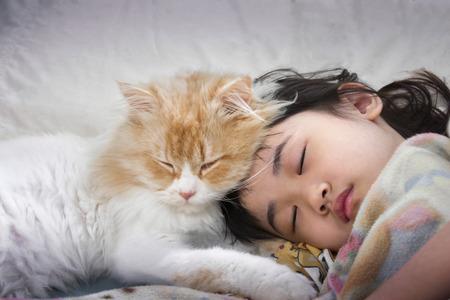 게으른 오후에 사랑하는 고양이와 고양이 낮잠하기