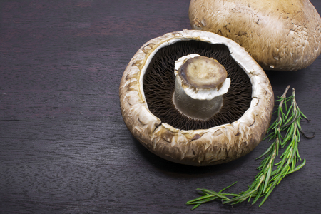 gills: Pair of Portobello Mushroom on Display with Rosemary