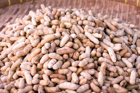 pea pod: Pile of Peanuts Ready to be Served Stock Photo