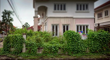 apartment for rent: BANGKOK, THAILAND - OCTOBER 13: Plants overgrow around the For Sale sign on an old and damaged property for sale inside Sasitorn Village in Bangkok on October 13, 2017.