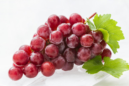 grape on white background