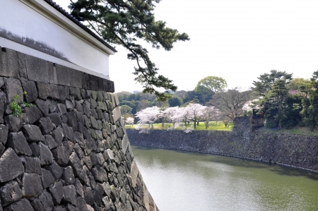 lakeview: Tokyo Edo castle with lakeview