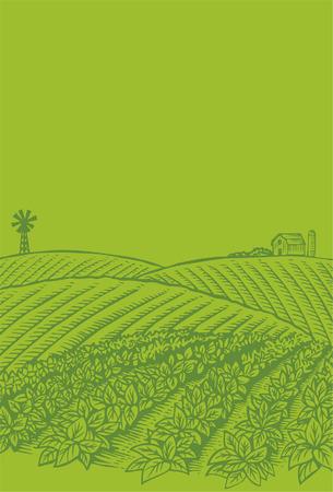 Dibujado a mano de campo verduras Foto de archivo - 31555563