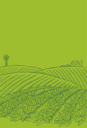 farm house: Hand drawn of vegetables field