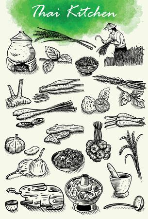 mortero: Dibujado a mano de hierbas tailandesas y comida, vector Vectores