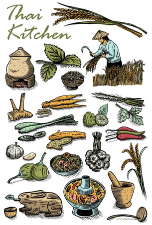 pestle: Hand drawn of Thai herbs and food, vector