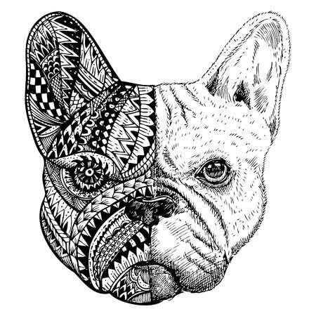 Disegnata a mano testa Bulldog francese stilizzato Vettoriali