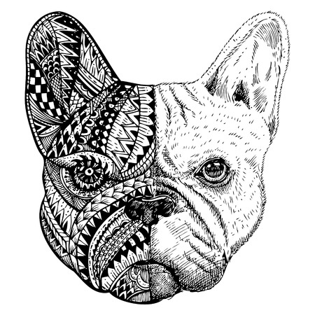 Hand getrokken French Bulldog hoofd gestileerd Vector Illustratie