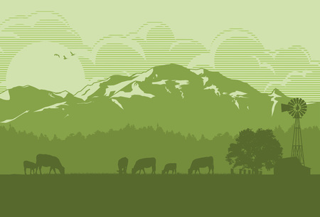 herd: Silhouette of cattle in countryside