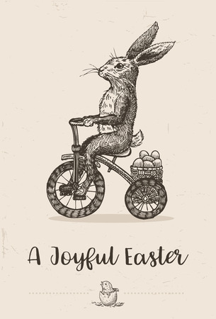 Hand drawn bunny riding tricycle with Easter eggs, vector Illustration