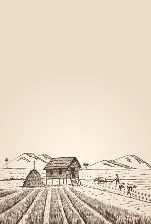 손으로 그린 농민 쌀 출원, 벡터 스톡 콘텐츠 - 92710728