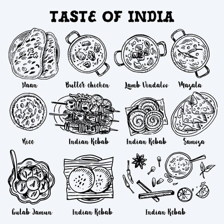 Indian food drawing. Linear graphic. Vector illustration. Engraved style.