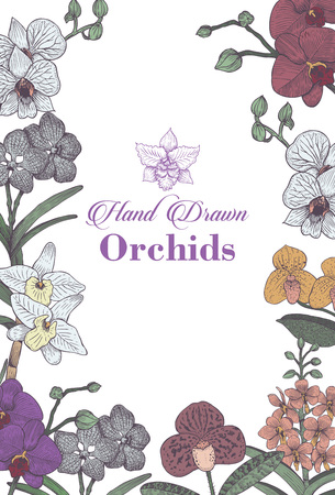 Hand drawn set orchid flowers menu, Vector