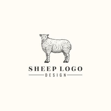 Hand drawn sheep isolated, Vector