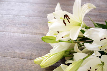 White Lily flowers on wooden background