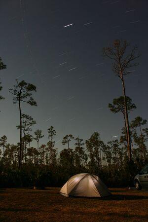 Star movements across night sky with slash pine tree (Pinus elliottii densa) silhouettes, Everglades National Park Pinelands, Florida photo