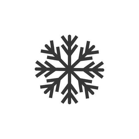 snowflake icon vector, flat design best vector