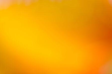 orange background: Gold yellow orange bokeh  and blur background
