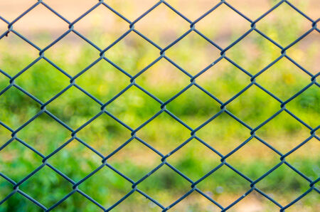 iron fence: Metal mesh wire fence with blur green background Stock Photo