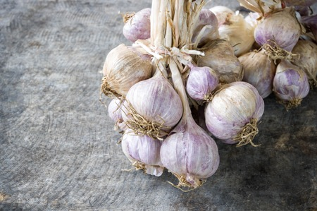 garlic clove: Close up of purple garlic on wooden background (Alliums, Alliaceae) Stock Photo