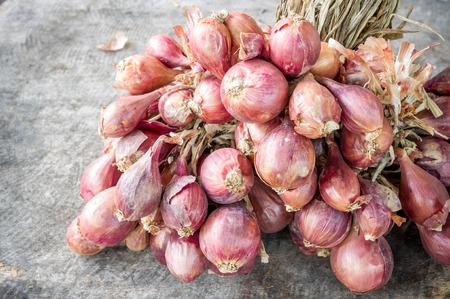alliaceae: Many red onions on wooden background (Alliums, Alliaceae)