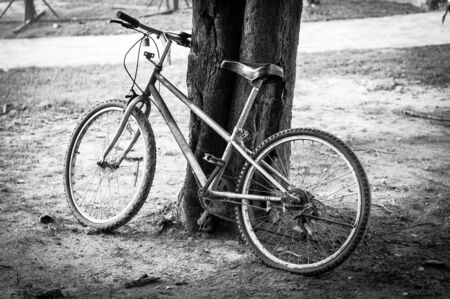 Old bicycle is parking.
