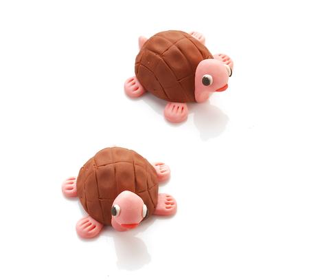 deux poupées de tortue sur fond blanc Banque d'images