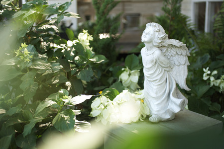garden statuary: close up stone angel doll in garden