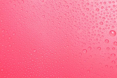 Close up water drops on pink background, Water drop in macro photography