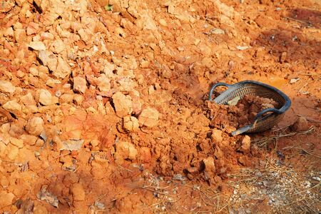 A pile of red soil and black picker, Background from construction site