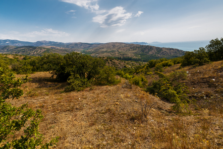hilly: hilly terrain in the summer. Crimea, Russia Stock Photo