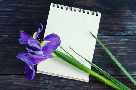 purple irises: purple irises on a wooden background with a notebook for your message