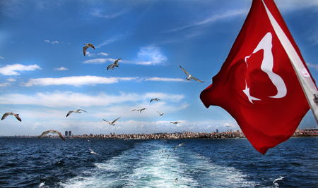Seagulls flying over the sea, Istanbul, Turkey Banque d'images