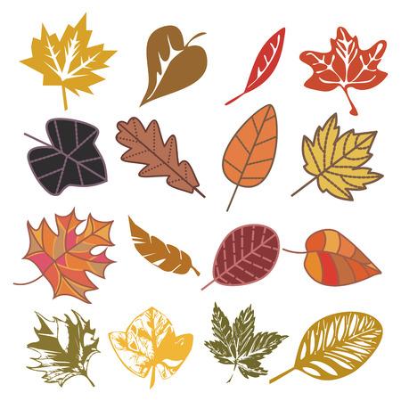 conjunto de hojas de otoñales aislados en blanco  Ilustración de vector