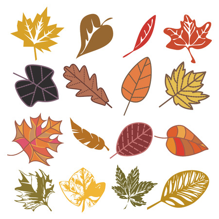 mahagoni: Satz von Autumn Leaves isolated on white  Illustration