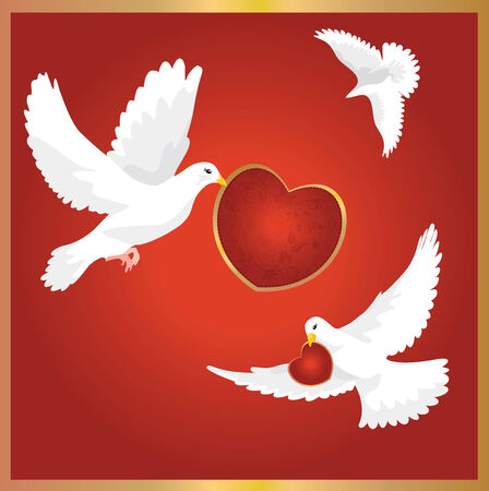 flying kiss: Valentine`s day card with dove