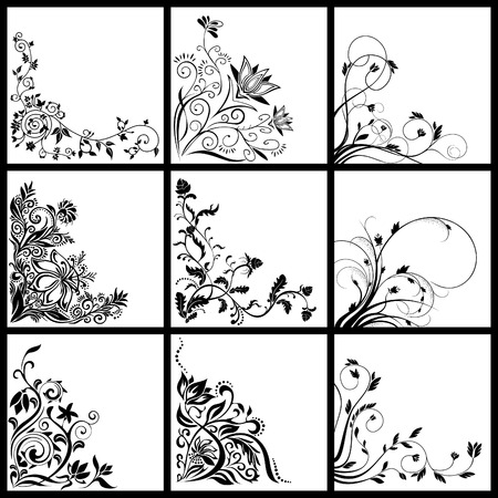 colection: Collection of different floral illustrations cards