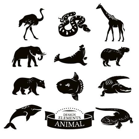 black snake: Set of animal icons vector illustration