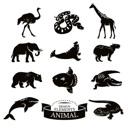 Set of animal icons vector illustration