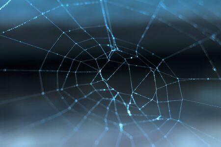 cobweb: Cobweb with dew drops on a dark background, macro